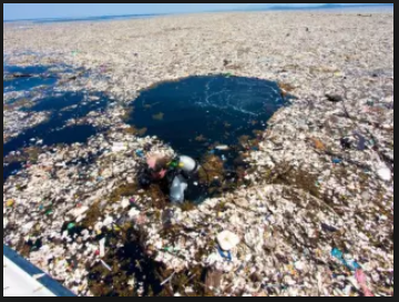 Plastic Island The Size of Texas Threatens Marine Life and Human Health